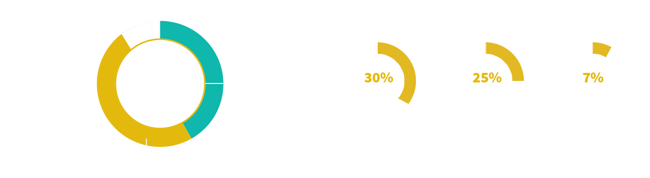 TXO Token Allocation